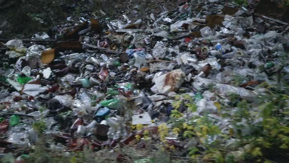 Thumbnail for Footage Forest Pollution. Dump Garbage in Woods