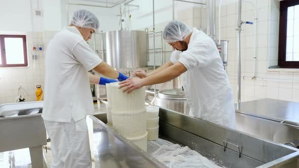 Diary Cheese factory- Cheese makers working cheese molds