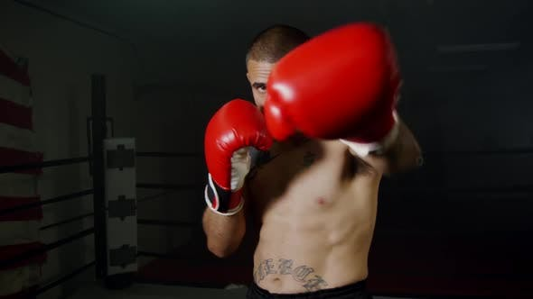 Thumbnail for Strong Boxer With Red Gloves Practice Punching 20
