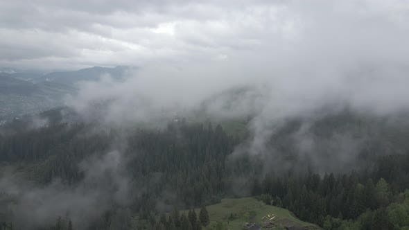 Thumbnail for Ukraine, Carpathians: Fog in the Mountains. Aerial. Gray, Flat