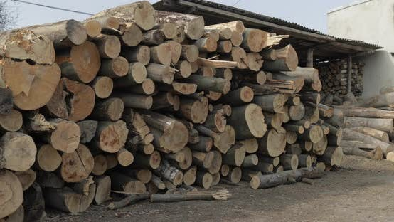 Thumbnail for Timber Logging. Freshly Cut Tree Wooden Logs Piled Up. Wood Storage for Industry