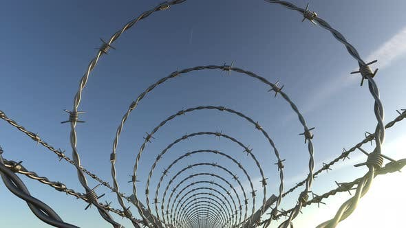 Cover Image for Inside Barbed Wire Spiral Fence
