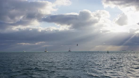 Thumbnail for Ocean with sailboats on a cloudy evening