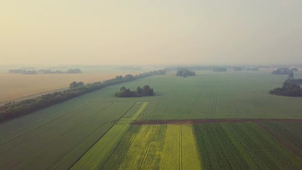 Thumbnail for Aerial: Flying Over Beautiful Fields. Also Visible: Fog, Agroculture, Shadows From the Clouds