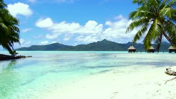 Thumbnail for Tropical Beach and Bungalows in French Polynesia 41