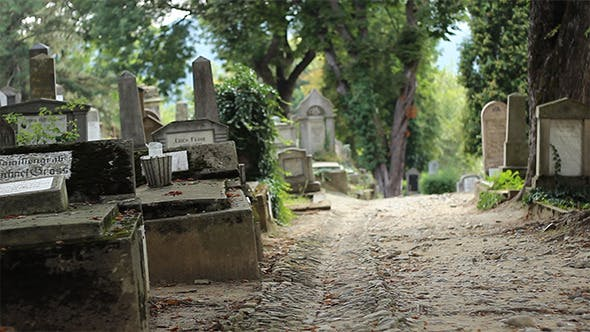 Thumbnail for Old Cemetery Alley