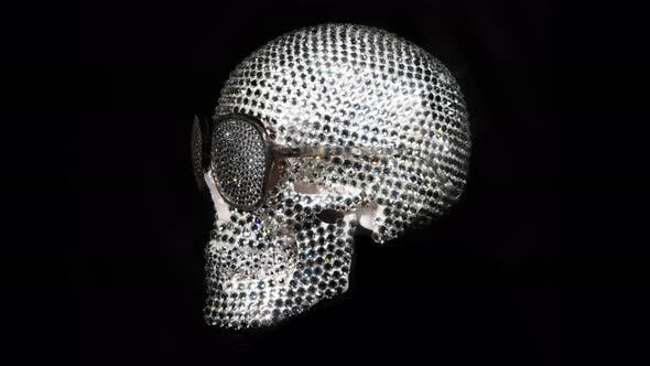 Cover Image for Diamond Skull
