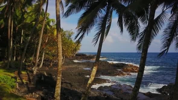 Coastline of Hawaii