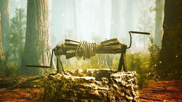 Old Stone Draw Well im Wald mit Nebel