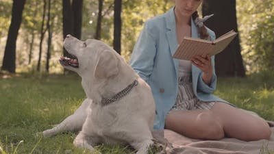 Unrecognizable Dog Owner Reading