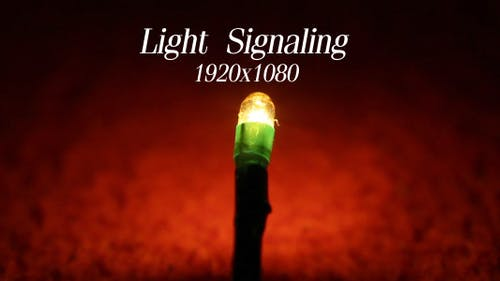 Light Signaling