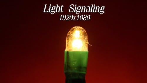 Light Signaling 2