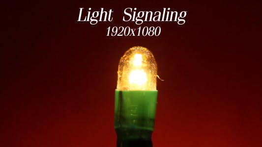 Thumbnail for Light Signaling 2