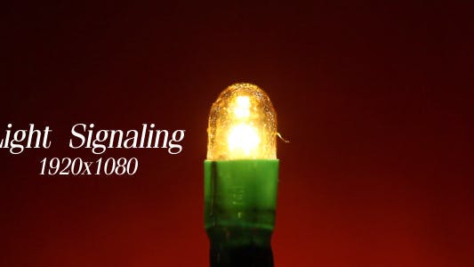 Light Signaling 3