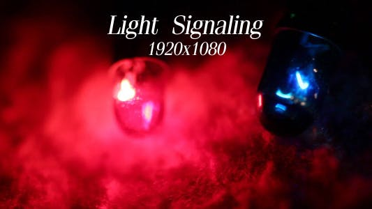 Thumbnail for Light Signaling 4