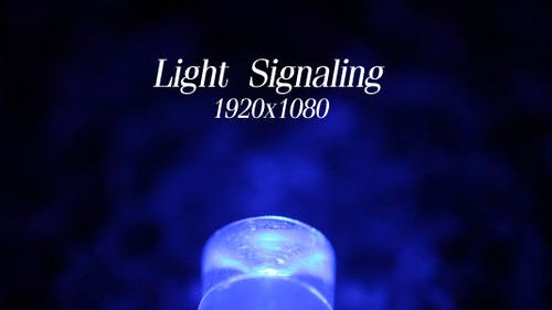 Light Signaling 5