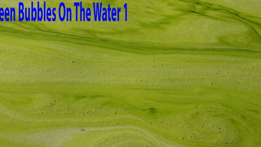 Thumbnail for Green Bubbles On The Water 1