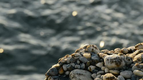 Stones on Sea Rocks