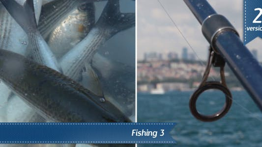 Thumbnail for Fishing Istanbul