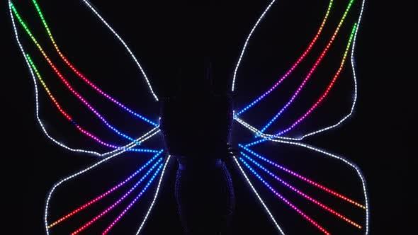 Un spectacle théâtral original sous la forme d'un papillon avec des ailes multicolores éclatantes. Charmant