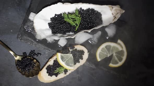 Thumbnail for Black Caviar Is Served on a Plate in the Form of a Real Shell with Mother of Pearl. The Concept of
