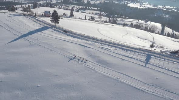 Thumbnail for Aerial view of a dog sled riding in the snow
