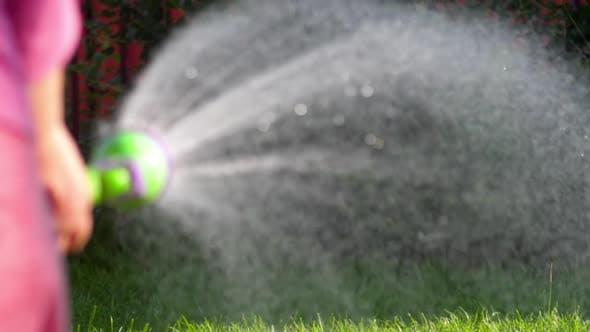 Cover Image for Manual Garden Sprayer