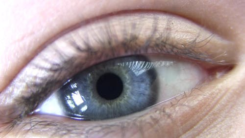 Increase And Decrease Pupil