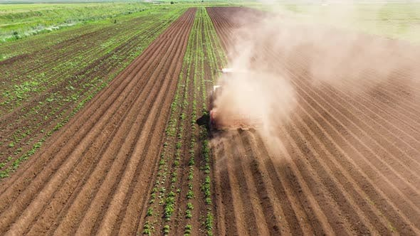 Thumbnail for Agricultural Machinery in the Potato Field Cultivates the Land