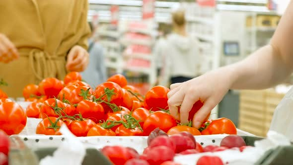 Thumbnail for Young Woman Holds White Plastic Bag and Chooses Tomatoes