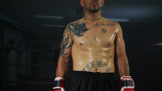 Thumbnail for Boxer Standing in Ring Ready to Fight