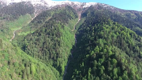 Thumbnail for Long Distance Flight in Wide Valley in Forest