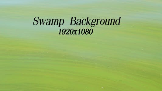 Cover Image for Swamp Background
