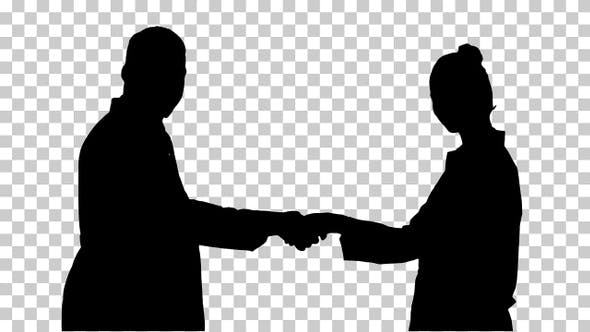 Thumbnail for Silhouette shaking hands