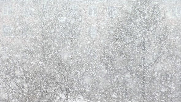 Thumbnail for Snow Background