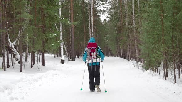 Cover Image for Human with Backpack Walking Throw the Winter Forest
