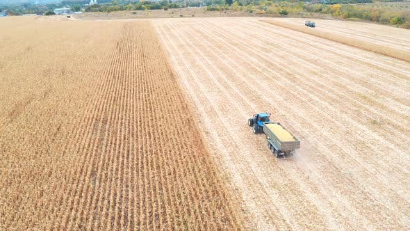 Thumbnail for Aerial View of Tractor Transporting Corn Cargo at Field During Harvesting. Flying