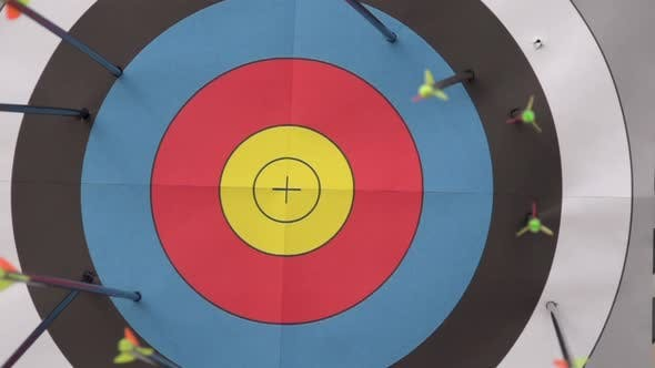 Thumbnail for An arrow hitting the center of a target.