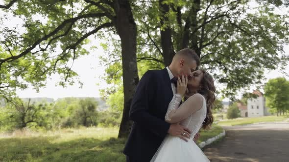 Thumbnail for Caucasian Groom with Bride in the Park. Wedding Couple. Newlyweds Kissing