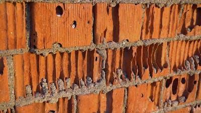 Red Brick Wall Slider Shot