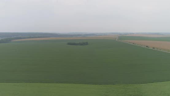 Thumbnail for Aerial of cultivated lands