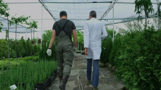 Thumbnail for Gardeners Walking in Nursery Garden