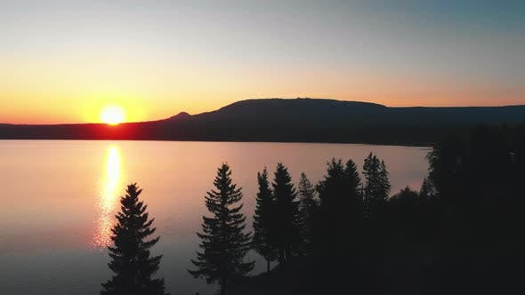 Thumbnail for Landscape of Nature - Late Orange Sunset and Coniferous Trees