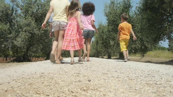 Thumbnail for Five children walking down rural road