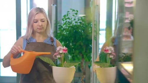 Blonde Lady Takes Pot with Flower and Waters From Can