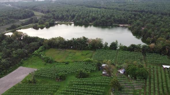 Landwirtschaftlicher Bauernhof neben dem Teich