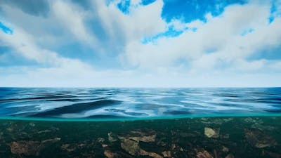 Underwater View with Horizon and Water Surface Split By Waterline