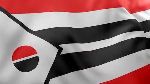 Arapaho Flag / Native American Flag