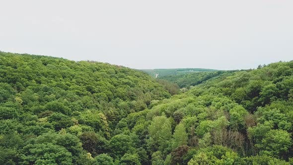 spectacular landscape of the green hills with forests and a river between them. Aerial view.