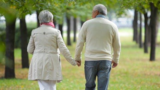 Thumbnail for Elderly Walk